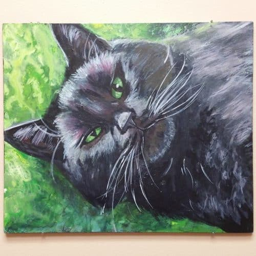 Kristen painted this portrait of my cat Motor and presented it to me at the end of a year with our practice. What a gift, teaching Kristen has been! ~Dr. Magnusson