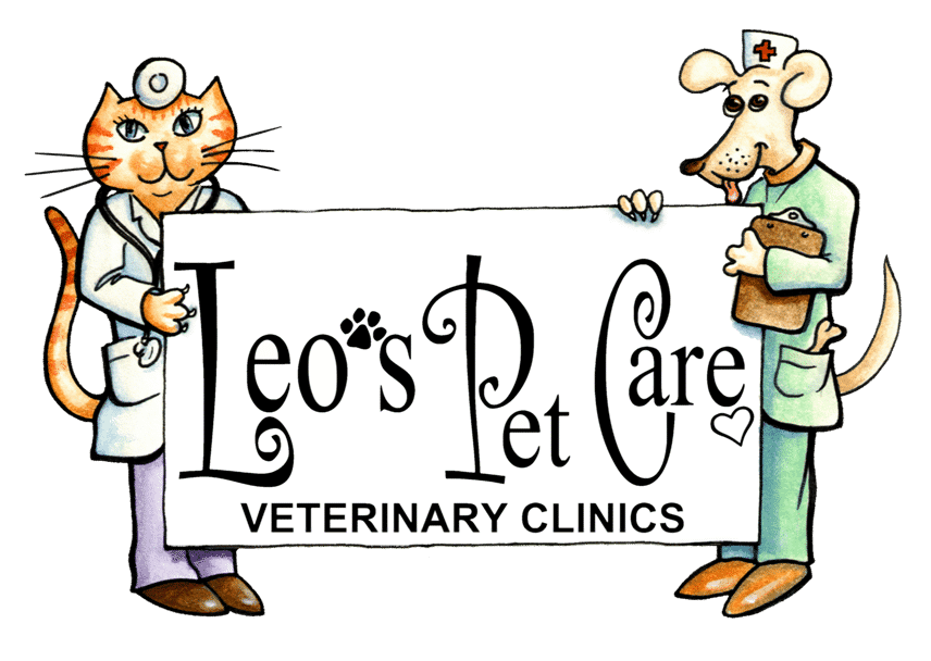 Two Great Little Veterinary Clinics